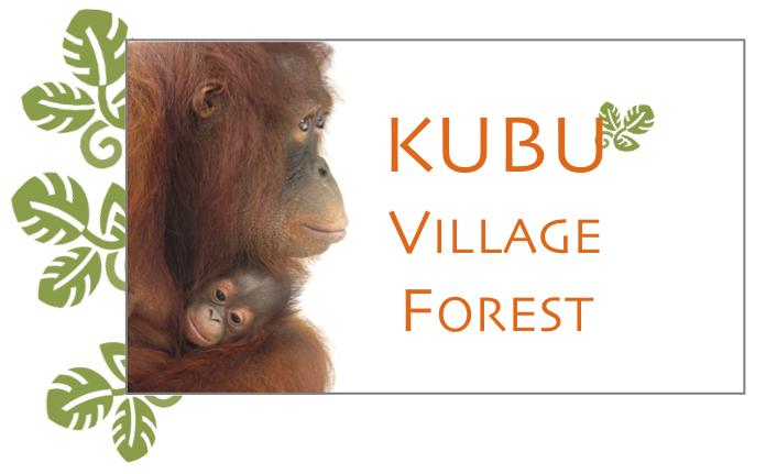 KUBU Graphic
