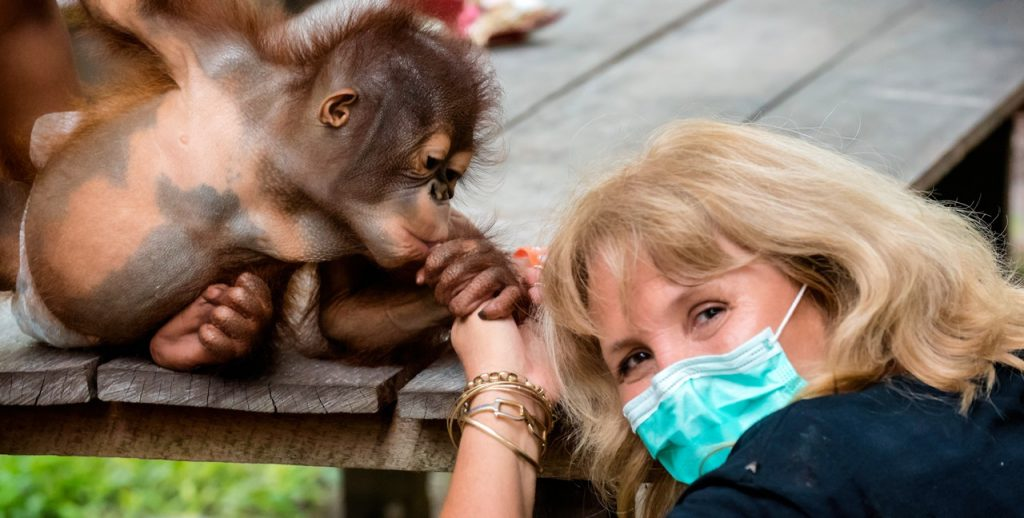 Kobe Steele & Orangutan