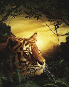 Wulan the Tiger