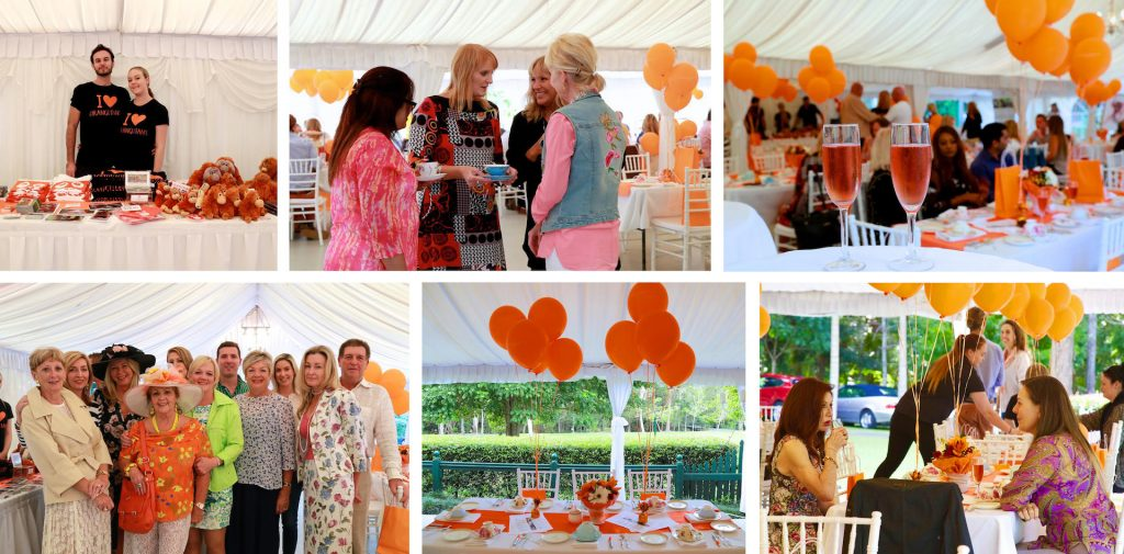 Fundraise for Us - Garden Party Collage
