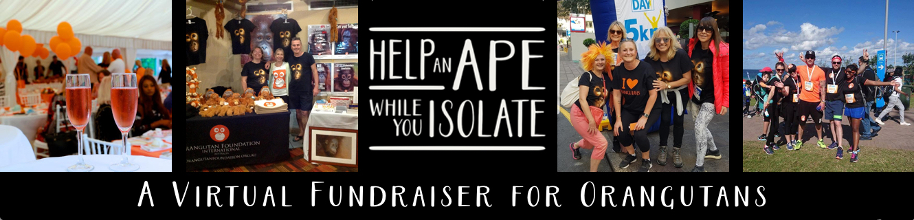 Virtual Fundraiser - Help an Ape
