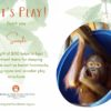 Virtual Gift - Let's Play certificate